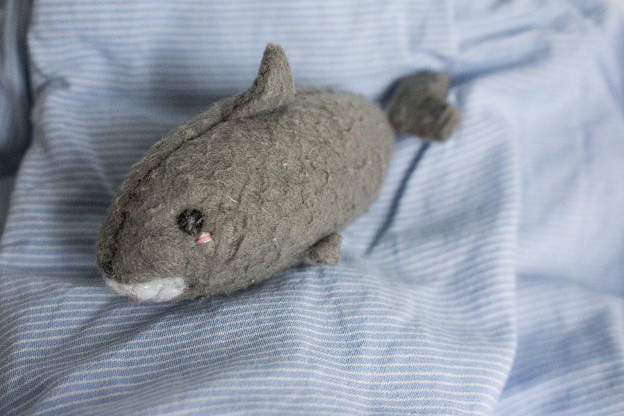 Sharks Shark Shark Week