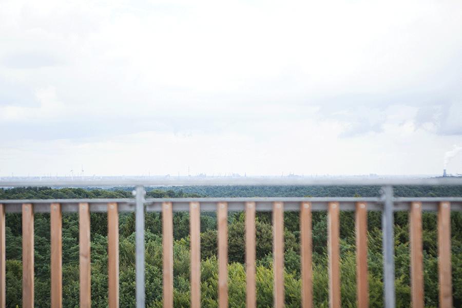 Blick auf Hamburg vom Elbblickturm - Videoreportage