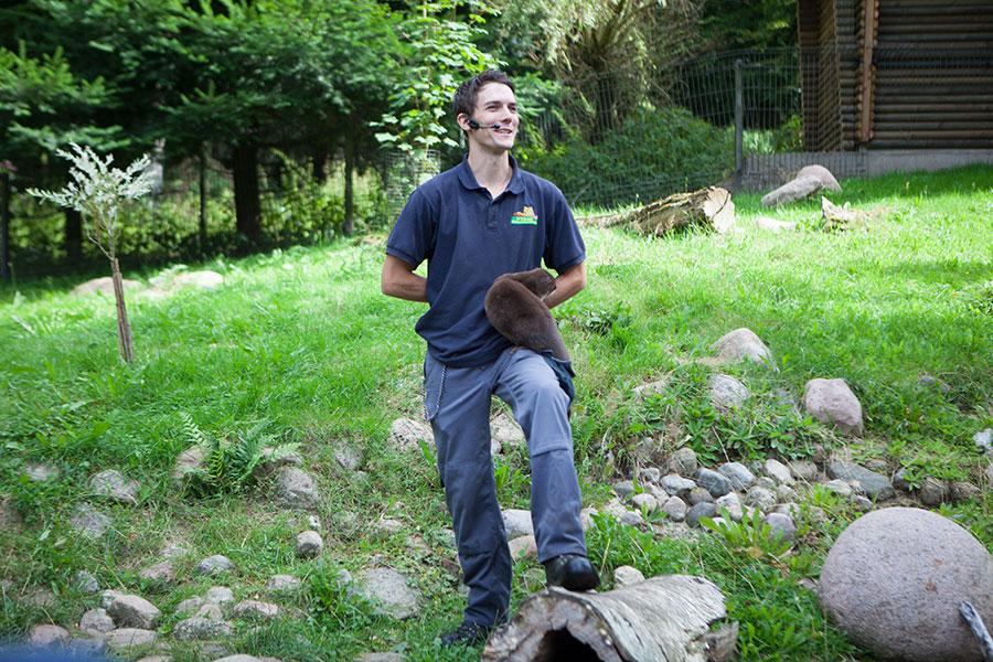 Tierpfleger mit einem Otter - Videoreportage